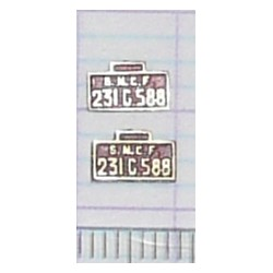 LBT-231-G-588 - Lot de 2 plaques 231 G 588 peintes en laiton