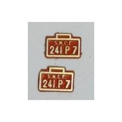 2 plaques 241P7 peintes en laiton