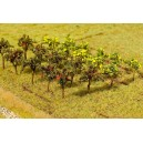 FALLER 181253 - Lot de 12 arbres fruitiers 30mm - HO 1/87